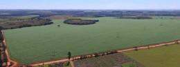 Savanna-proyecto-solar-de-GPG-en-Brasil